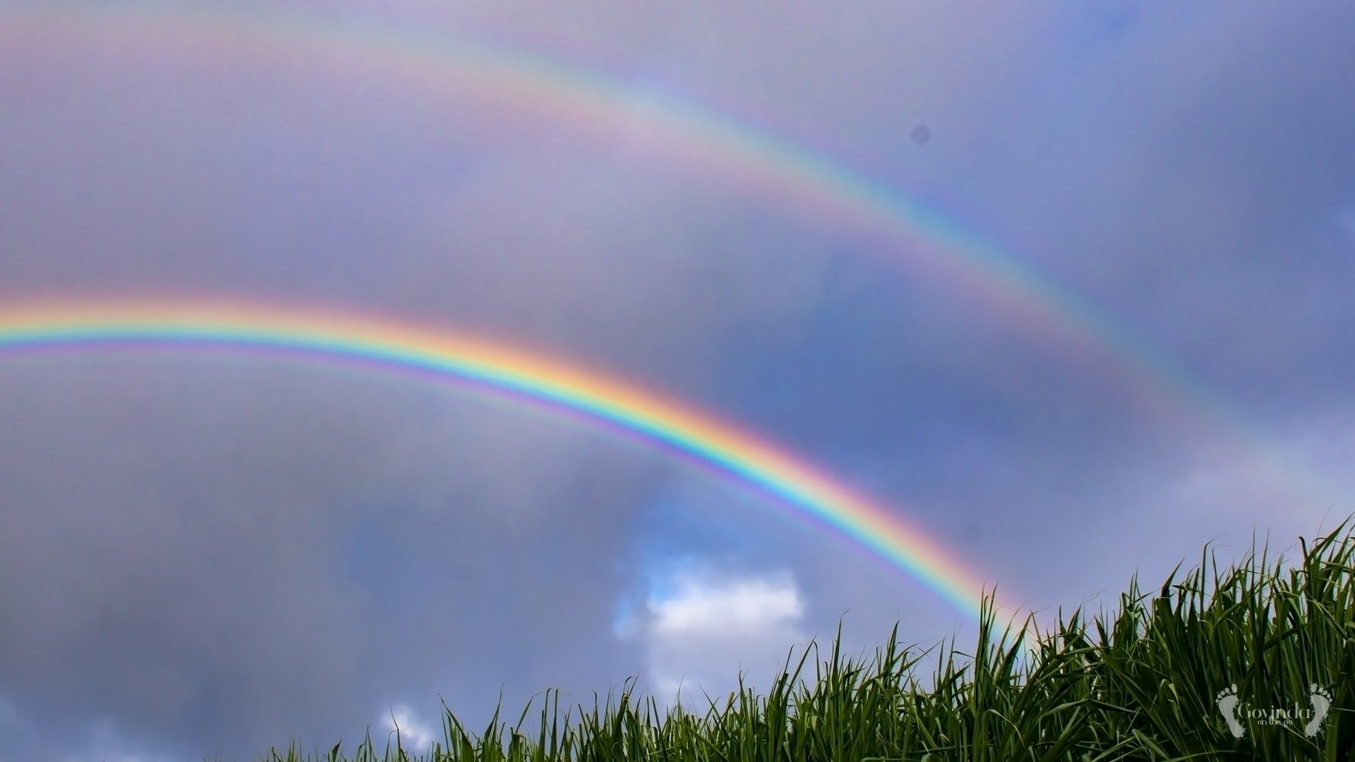 Double rainbow over sugarcane field in Mauritius
